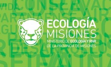 ¿Necesita Corrientes un Ministerio de Ecología como el existente en Misiones?