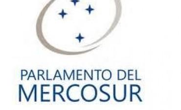 De la constitucionalidad de la ley (27.120) que convoca a elegir Parlamentarios del Mercosur