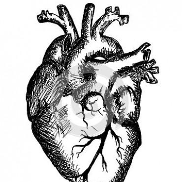 Cardioversión para la dēmo-kratía aldeana.
