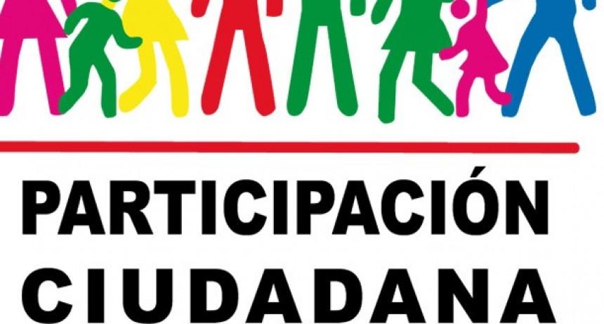 Proyecto de creación del consejo de la participación ciudadana correntina.