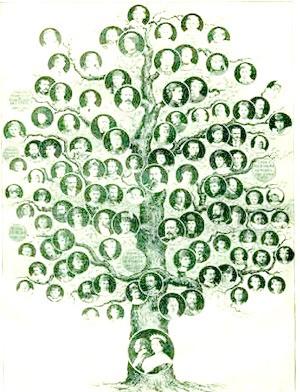 Genealogía del poder correntino.
