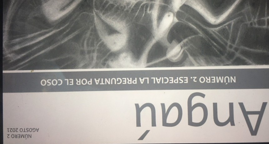 Segundo número de la Revista