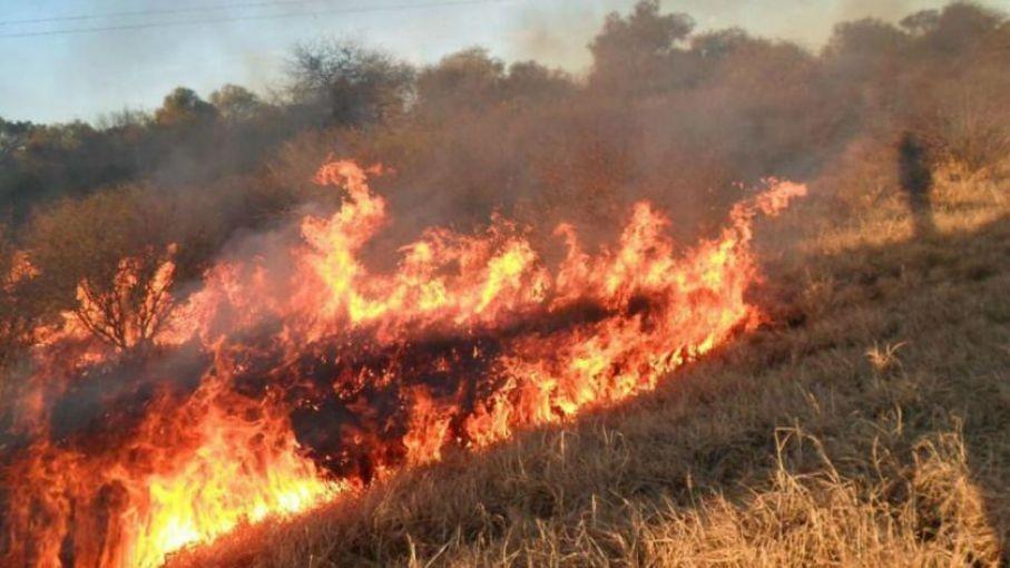 Incendios forestales: un combo peligroso que se repite